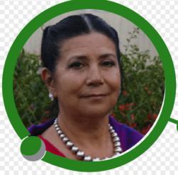 Yolanda Gayol profile image