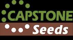 Capstone Seeds logo image