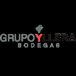 Grupo Yllera logo image