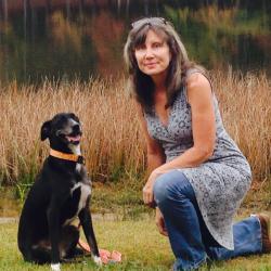 Tracy Wyman profile image