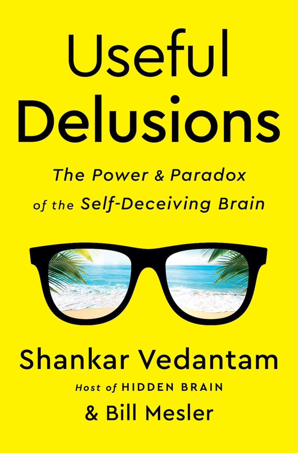 Useful Delusions The Power and Paradox of the Self-Deceiving Brain by Shankar Vedantam