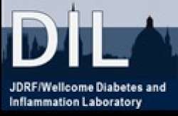 JDRF/Wellcome Diabetes and Inflammation Laboratory logo image
