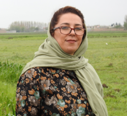 Nahid  Naghizadeh  profile image