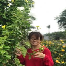 Hien Thu Bui