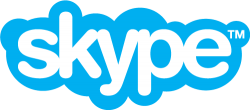 Skype logo image