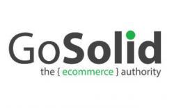 GoSolid logo image