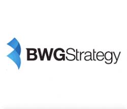 BWG Strategy logo image