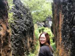 Anh Bùi profile image