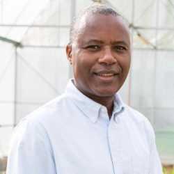 Festo Massawe profile image